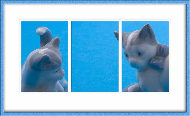 Feb 19 - Cats in blue