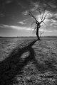 Remains-DSC_0440