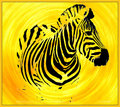 XYZ---eXtremely eXciting eXtinct-Yellow-Zebra.jpg