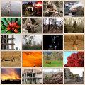 PhotoadayinMay-collage.jpg