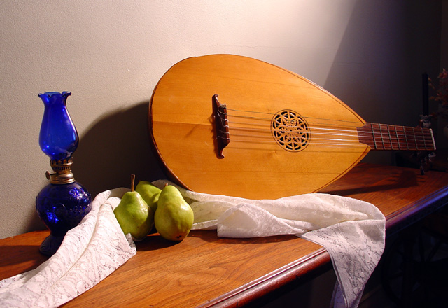 Still life with lute