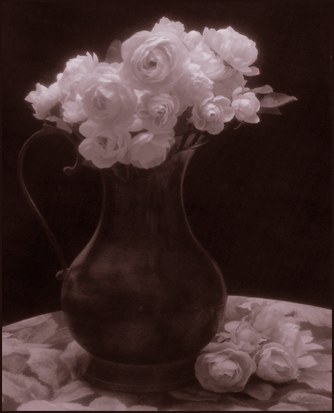 Still Life with Pitcher and Roses