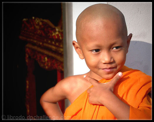 A Novice Monk: Simple Life or Simply a Kid?