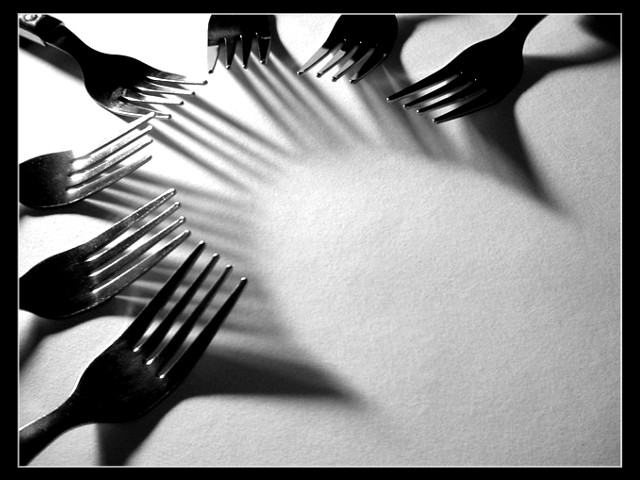 Ordinary Forks, Extraordinary Shadows