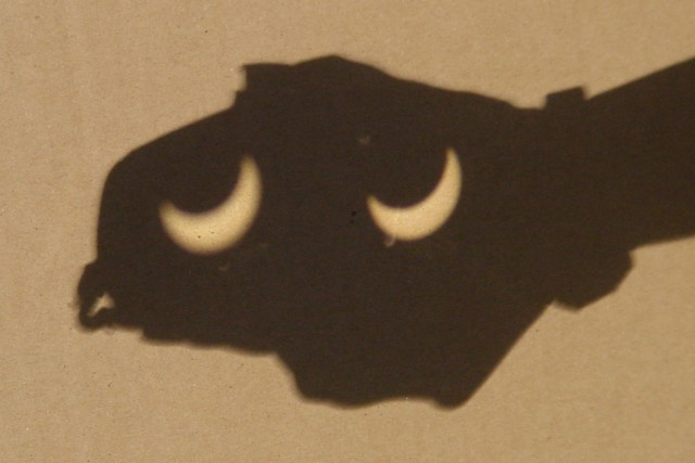 Creature from the Partial Eclipse