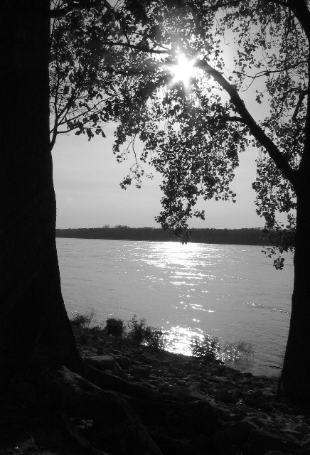 Along the Mississippi