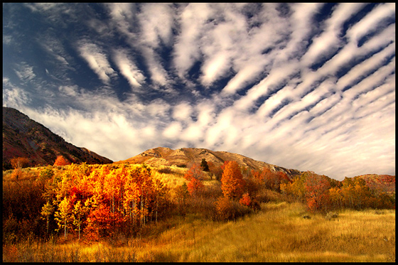 Fall Comes to Wellsville Canyon