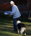 A dog's pleasure - 'Food  . . Hey cook! Come back with that!'