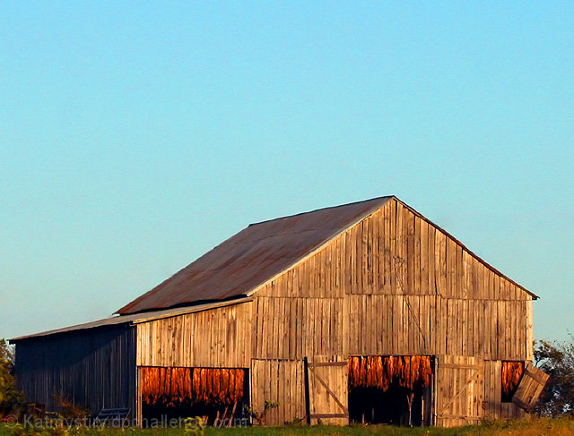 Tobacco Barn at Sunset
