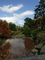 Fall at Brookside Gardens