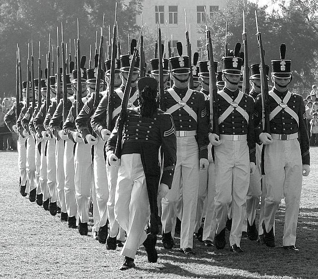 Wooden Soldiers on Parade