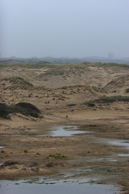 Winter dunes