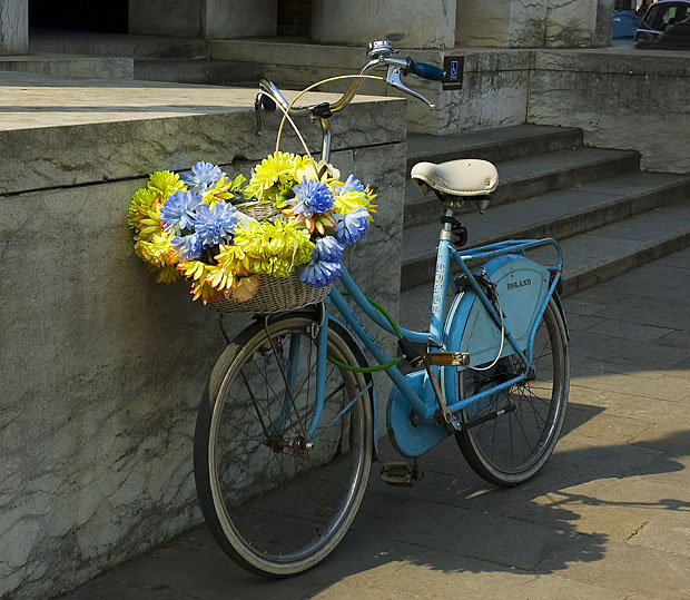 a floral bicycle