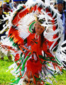 Chickahominy Tribal Dancer
