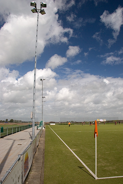 Field under the sky