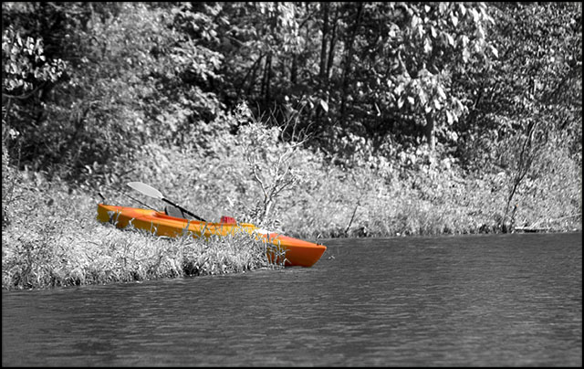 Kayak Dreamcicle