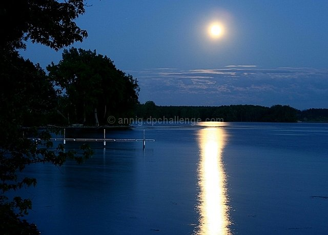 ~Moonlight Serenade~