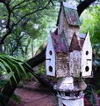 Bird Condo - Closed for Repairs