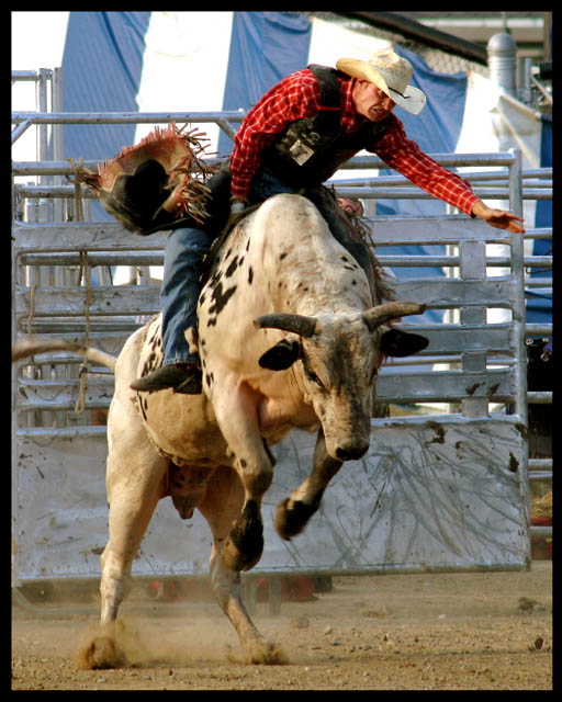 A Cowboy's Nightmare ... Falling Off