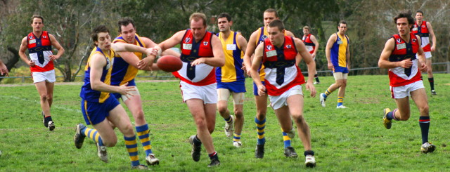 In pursuit at the local footy oval