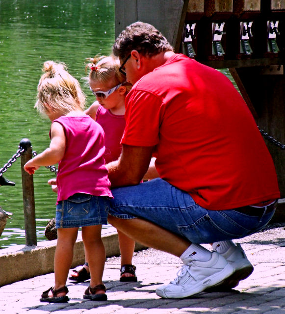 Lets Feed the Ducks, Dad!