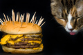 *Fast Food - May be hazardous to your health