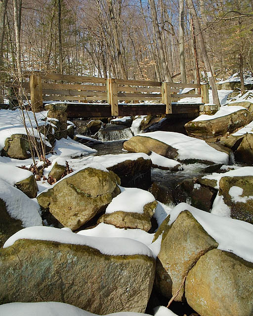Trout Brook Bridge