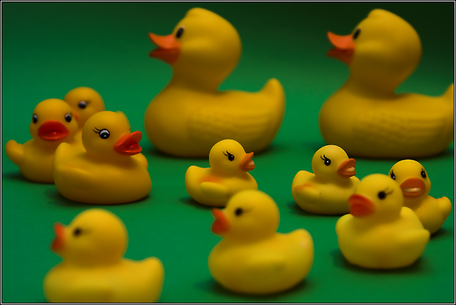 Yellow Duckies in S Major