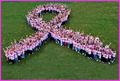 Pink Ribbon - Walk to End Breast Cancer