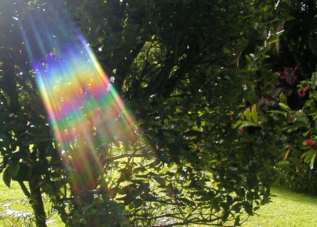 The unseen spectrum of light
