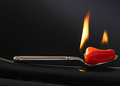 Roasted Red Pepper on Spoon