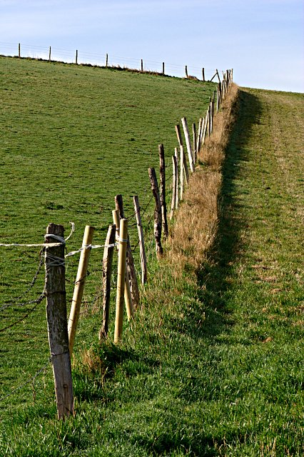 The fence on the hill