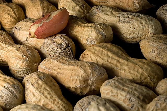 Peanut pattern