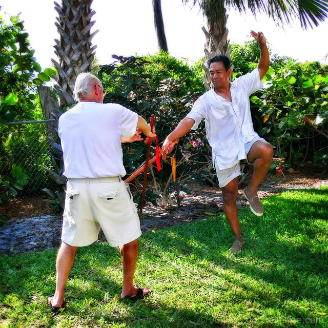 Tai Chi Sword Play