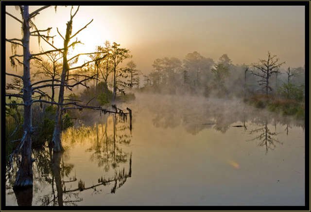 Misty Sunrise on Town Creek