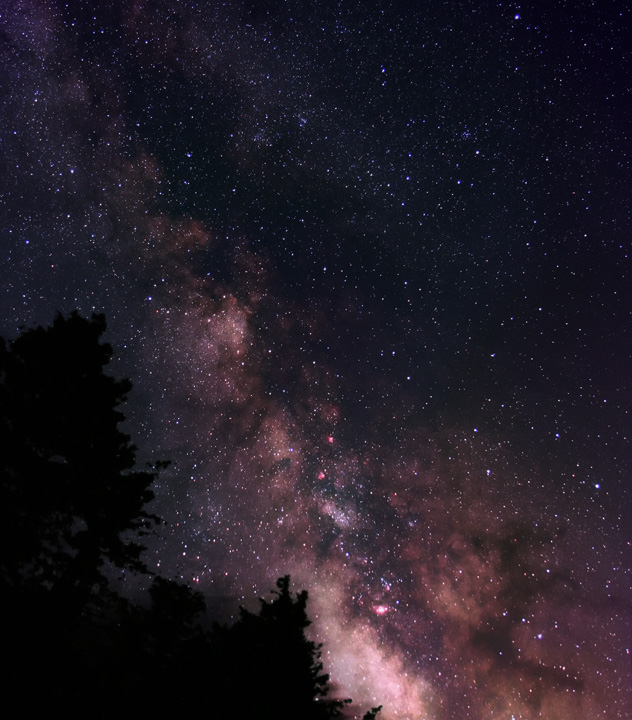 The Creators Masterpiece -- The Milky Way rising over the Pines