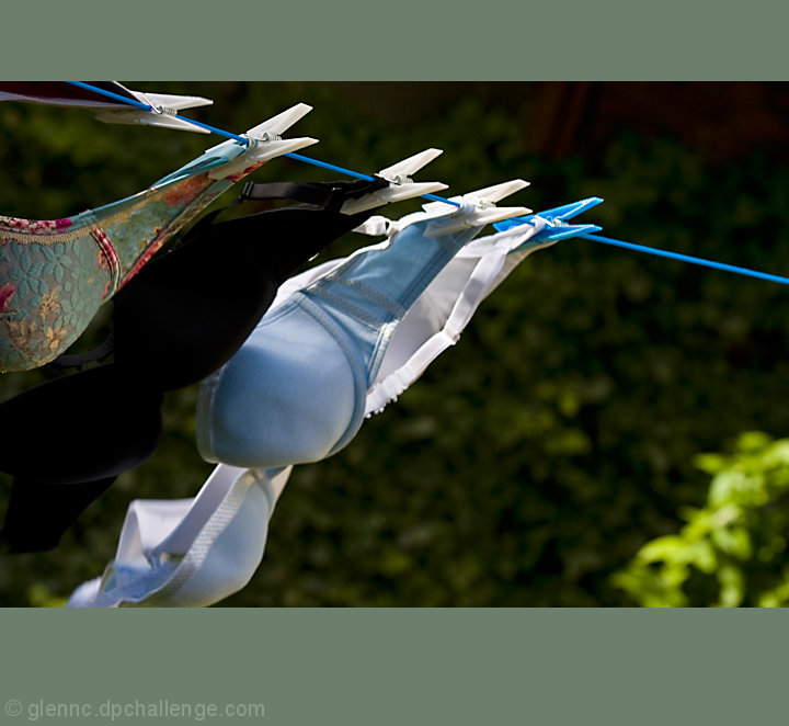 bras on a washing line