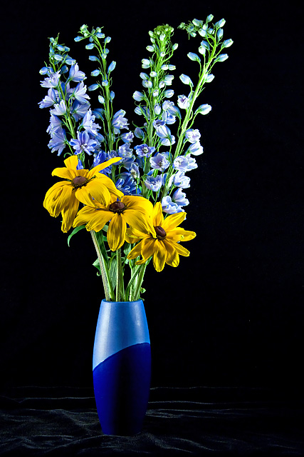Susans and Delphiniums