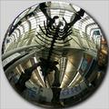 Transported in Time & Place: Brachiosaur Skeleton, O'Hare Intl.