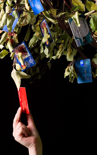 Money doesn't grow on trees anymore...Credit Cards Do