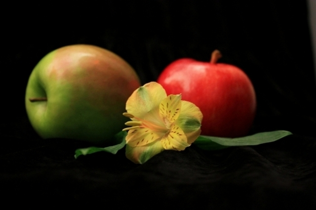 Apples Two and a Flower