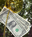 Oil Money- The Oil Tycoons think our money grows on trees!