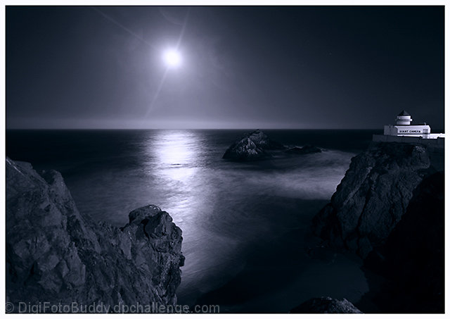 Moonlit Bay