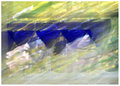 ' . substr('//images.dpchallenge.com/images_challenge/1000-1999/1114/120/Copyrighted_Image_Reuse_Prohibited_829737.jpg', strrpos('//images.dpchallenge.com/images_challenge/1000-1999/1114/120/Copyrighted_Image_Reuse_Prohibited_829737.jpg', '/') + 1) . '