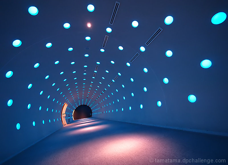 The Tunnel of Lights