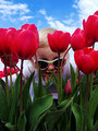"being ""Chy"" in the tulips (Cheyenne 2 yrs old)"