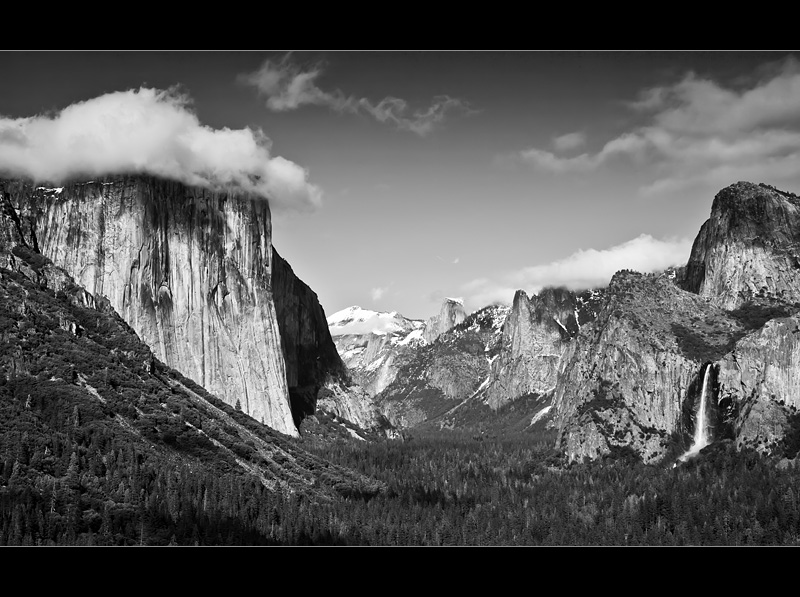 Ansel Adams Tribute