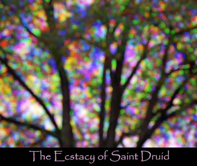 The Ecstacy of Saint Druid