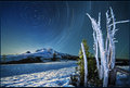 Star trails over Mt. Hood