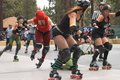 roller derby - the #1 fastest growing female sport in the world